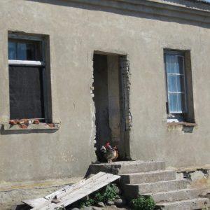 Курятник в одном из домов