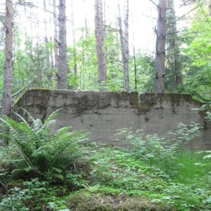Остатки финских домов