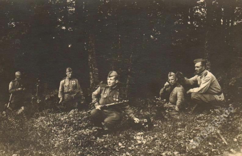 Артиллерийские связисты Карельского фронта в Карельских лесах, июнь 1944 г.