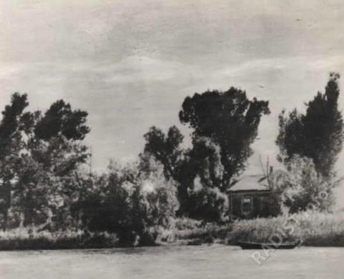 Дом, где была установлена первая гражданская радиостанция системы А.С. Попова. Остров Перебойный, 1901 г.