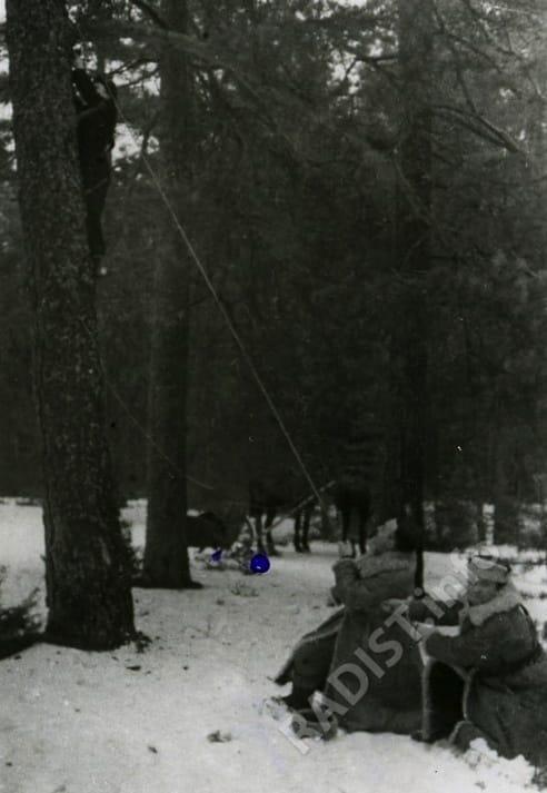 Первая антифашистская партизанская бригада. Радисты натягивают антенну, ноябрь 1943 г.