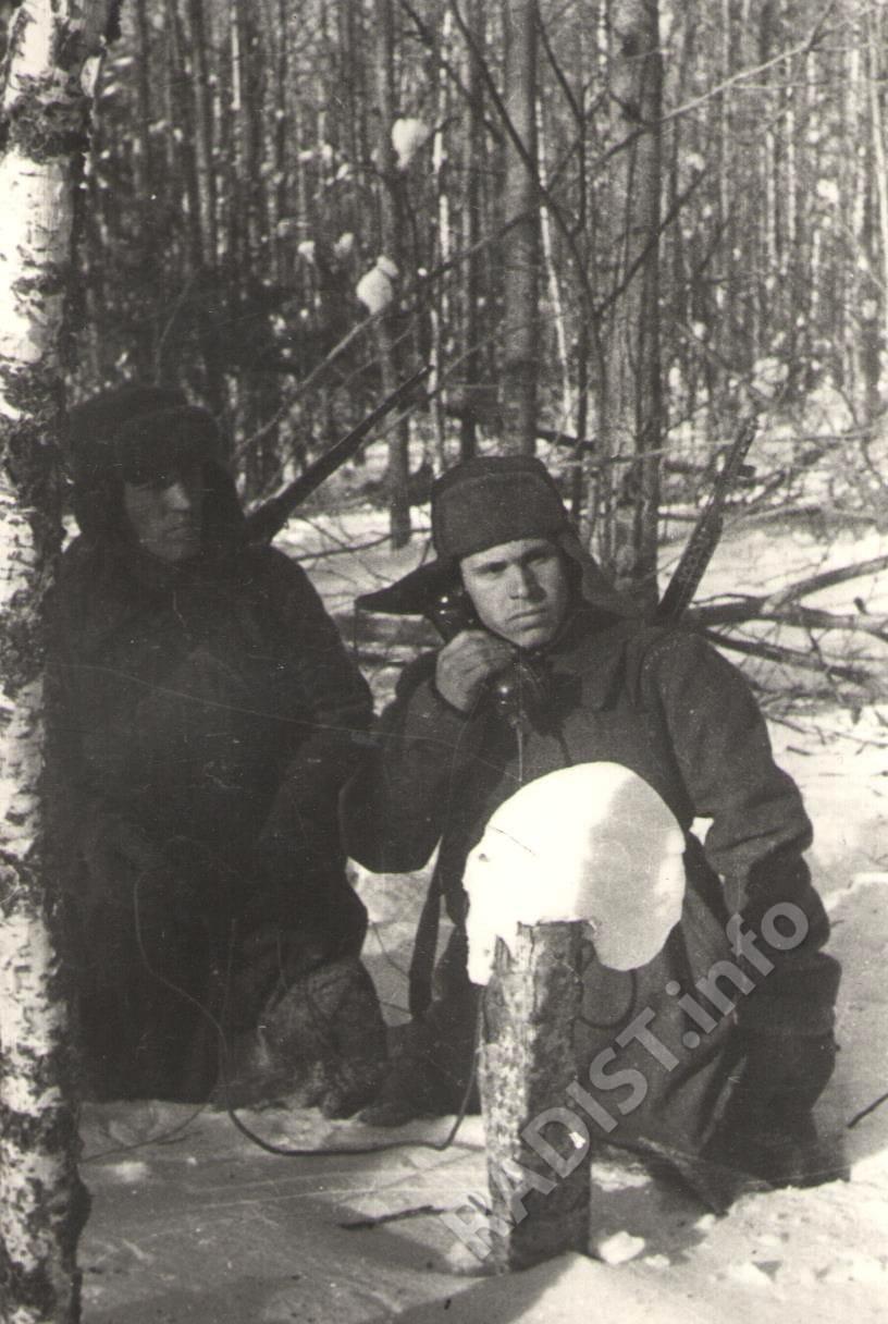 Связисты, гвардии сержант Н.И. Макуров и гвардии красноармеец В.И. Самохин на телефонном пункте в лесу. Московская область, ноябрь 1941 г.