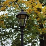 фонарь в сквере